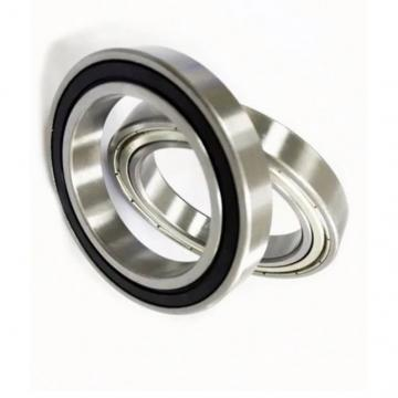 Hybrid Ceramic Bearing 6206-2z/Va228 for Ceramics